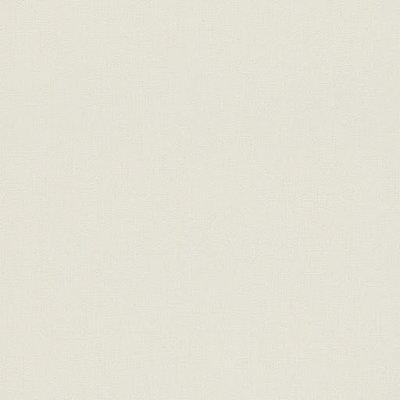 545883 en suite room wit vinyl op vlies