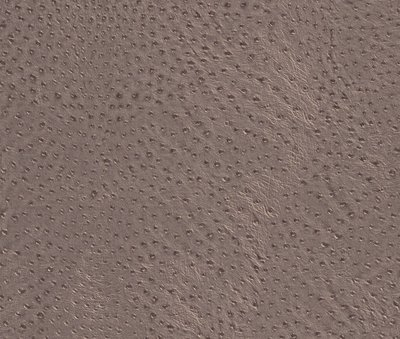 423631 african queen donker taupe